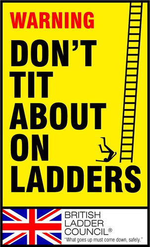 Don't Tit About On Ladders | by scarygoround