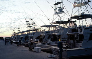 Charter boats docked at Oceanside Marina: Stock Island, Florida | by State Library and Archives of Florida