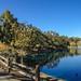 Sharon Park - Panorama - Menlo Park, CA