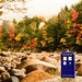 Doctor Who in New Hampshire