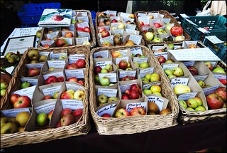 Stroud Farmers' Market ... apple selection. | by bazzadarambler