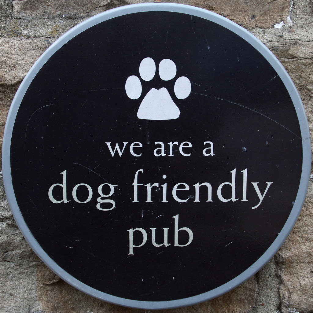 Dog Friendly B Bs In Blackpool