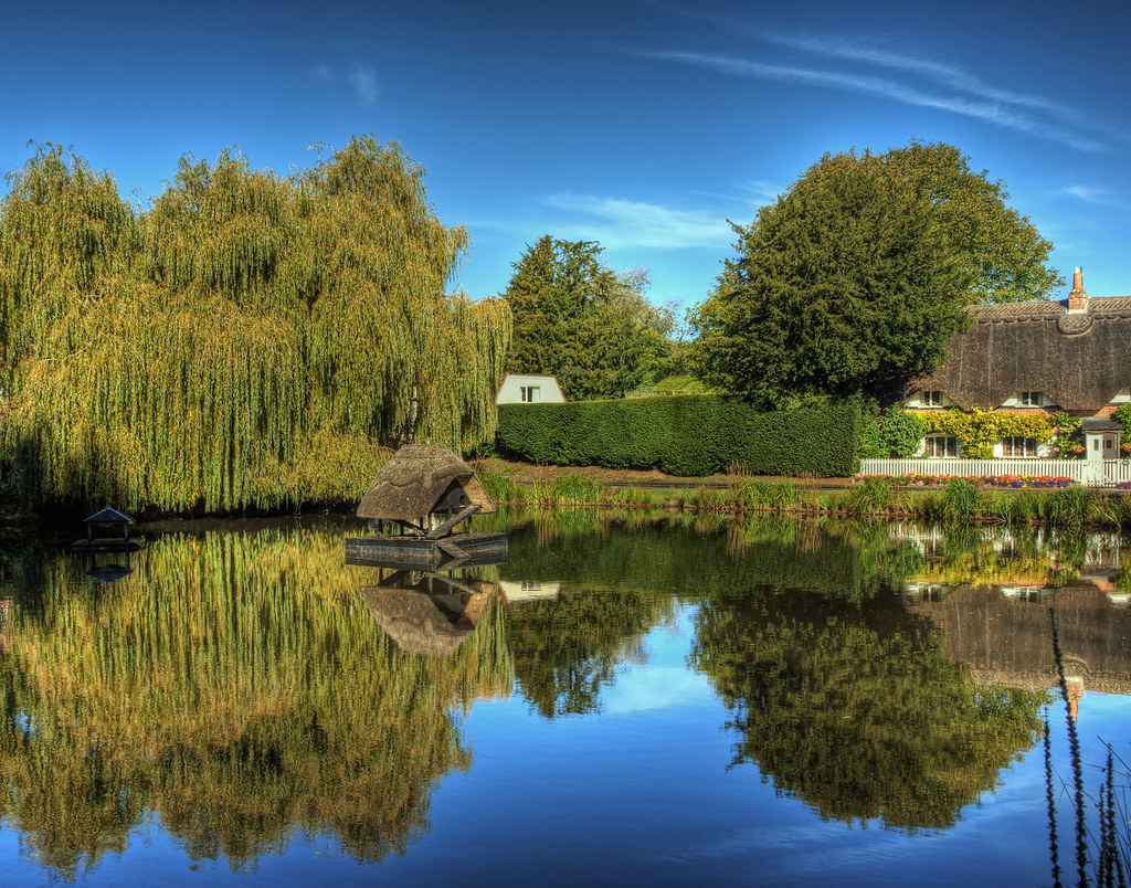 The duck pond at the village of crawley near winchester for Pond companies near me