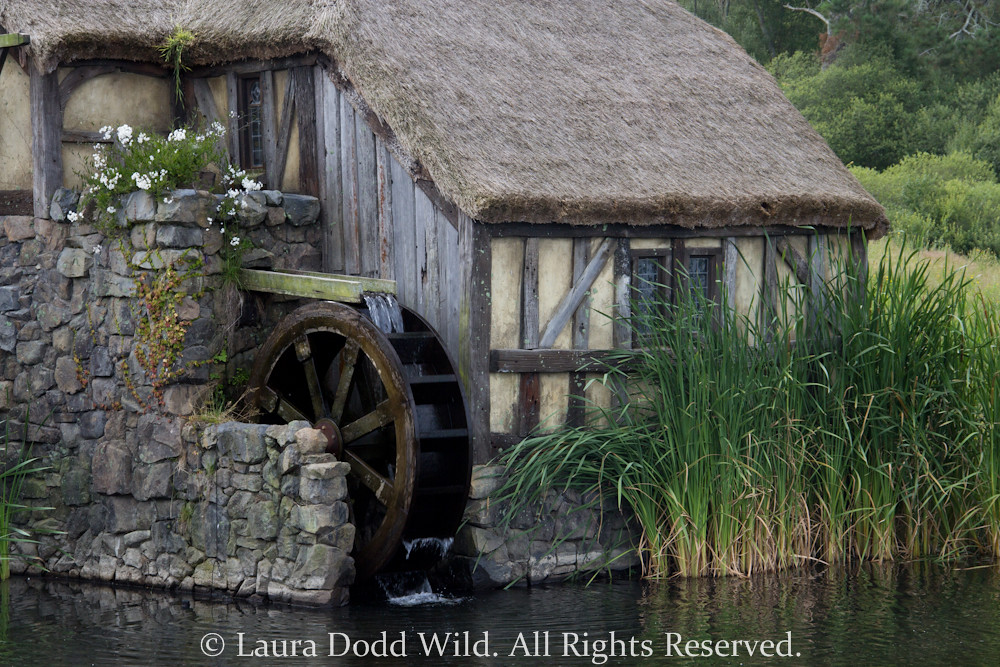 Image result for hobbiton water wheel