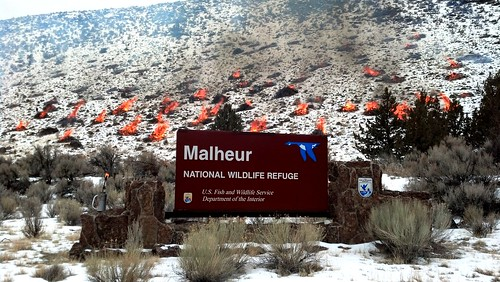 Pile Burning at Malheur NWR | by USFWS Pacific