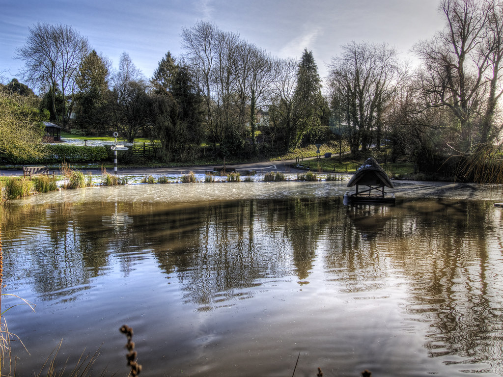 The half frozen duck pond at crawley near winchester hamp for Pond companies near me