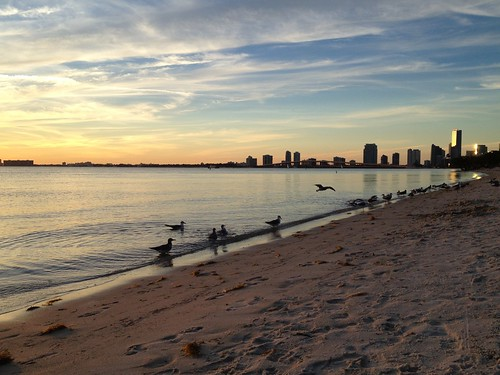 Miami Skyline from Key Biscayne Beach | by miamism