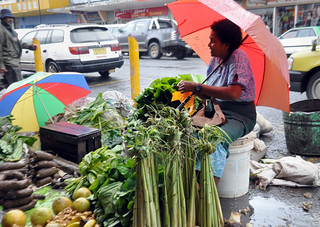 In the largest agriculture-based countries of the Pacific region, women market vendors have long been keeping their families and communities afloat | by Say NO - UNiTE