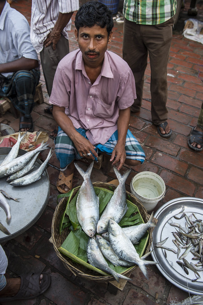Fish seller at a fishmarket in Barisal, Bangladesh. Photo … | Flickr