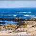 Pacific Ocean @ 17 Mile Drive