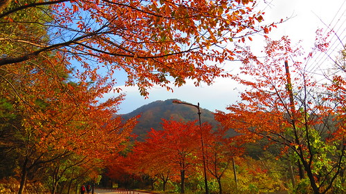 Mount Seoraksan | by Headhigheartstrong