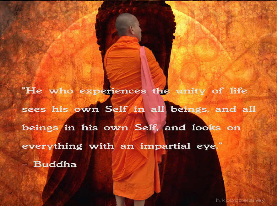 This Is The 62nd Of 108 Buddha Quotes: This Is The 72nd Of 108 Buddha Quotes