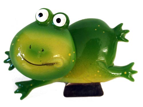 aimant de cuisine grenouille verte photo under creative co flickr. Black Bedroom Furniture Sets. Home Design Ideas