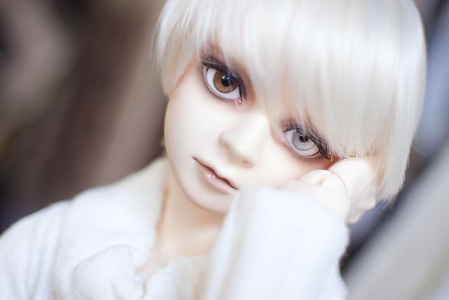 Heterochromia iridum   Flickr - Photo Sharing!  Heterochromia i...