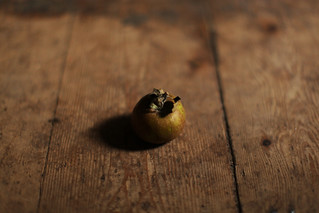 tiny_apple | by Sarah Ryhanen