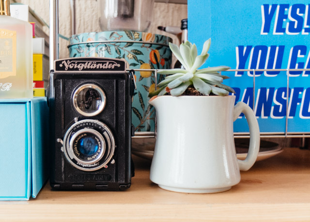 voigtlander camera and succulent - room tour - cardboardcities