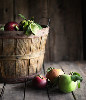 apples | by hannah * honey & jam