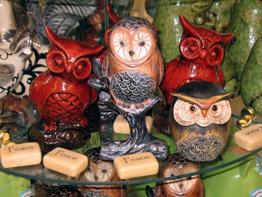 Decorative Owl Pictures