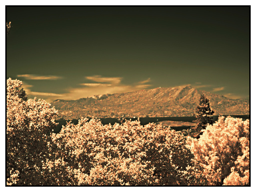H20160919-0003—Mount Tamalpais in Infrared—Berkeley Rose G… | Flickr
