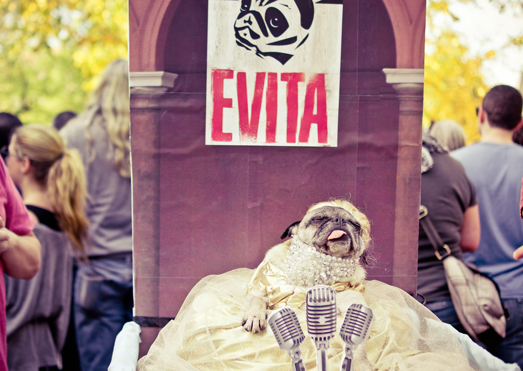 halloween dog parade 2012 tompkins square park east village new york city - Halloween Parade East Village