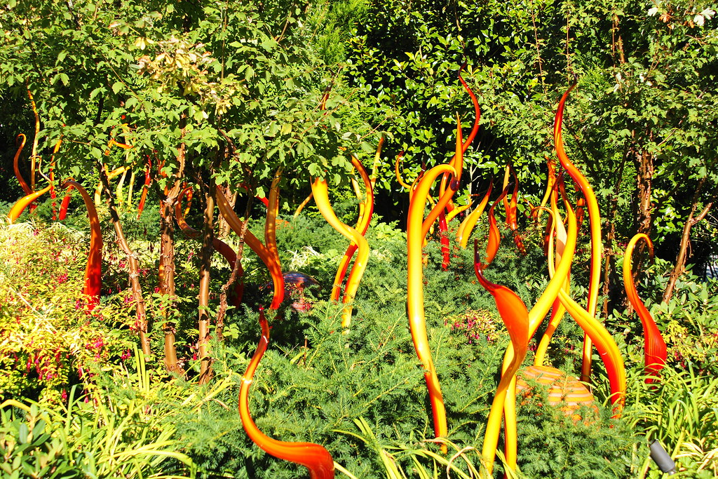 Chihuly garden and glass museum, Seattle, WA. located besi… | Flickr