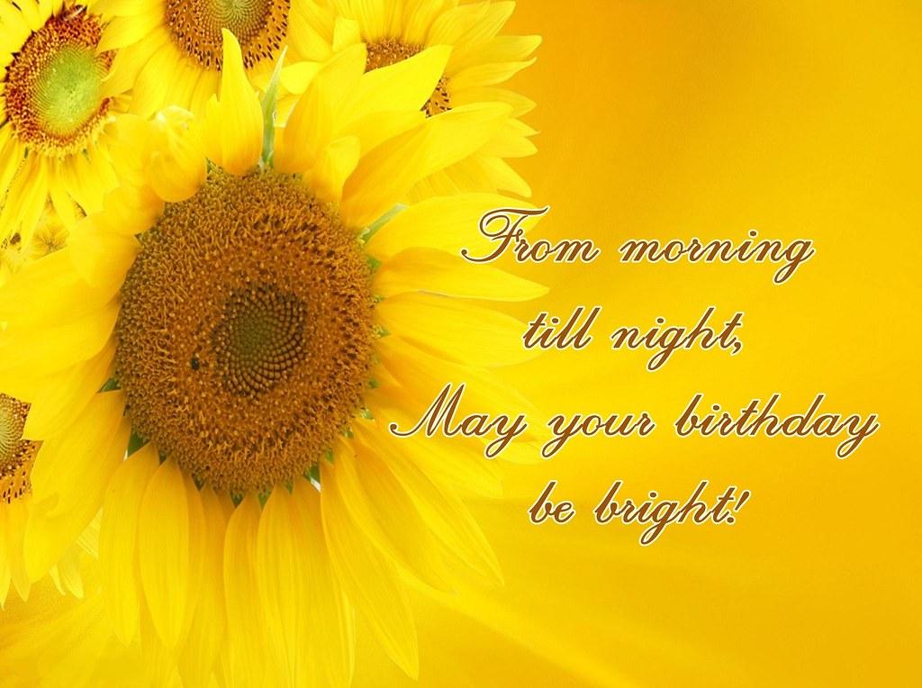 Happy Birthday Sunflower   Barbacci   Flickr