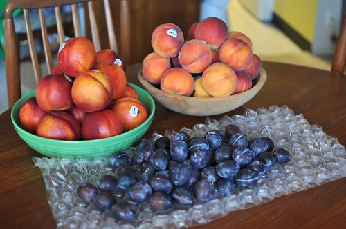 Sweet Preservation fruit | by Marisa | Food in Jars