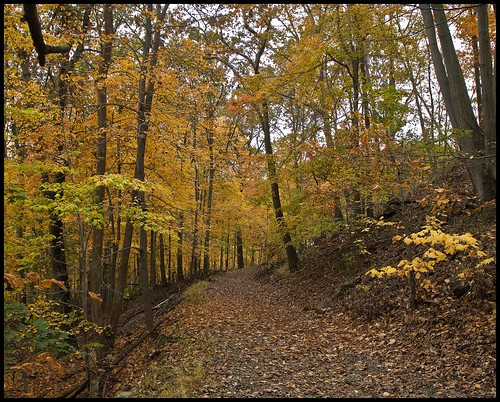 Walking On HiTor Mt. Rockland County,NY. | by R. J. Hannapple