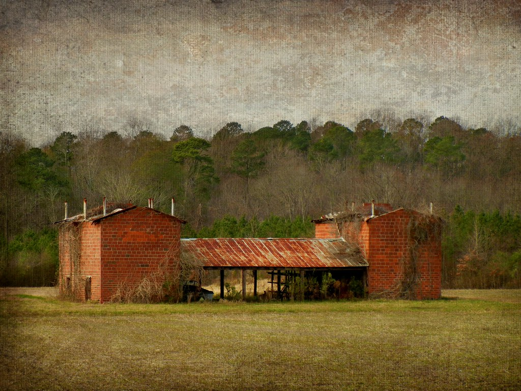Abandoned Fancy Tobacco Curing Barns Nash County North C