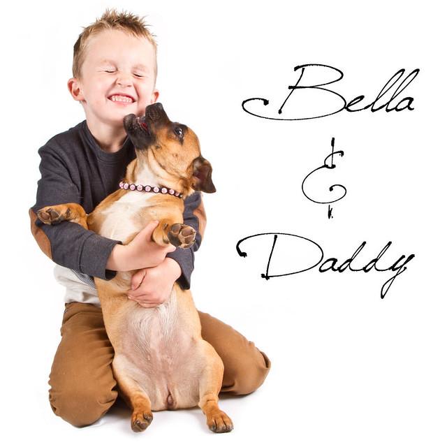 Bella Dog Food Filet Mignon Bzzagent