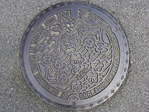 Tamaho Yamanashi, manhole cover (山梨県玉穂町のマンホール)