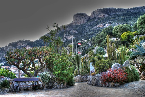 Jardin exotique de monaco it is located in the south of for Boulevard du jardin exotique monaco