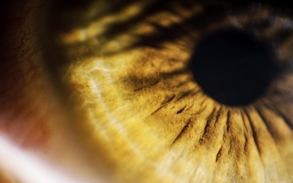 4K Retina resolution wallpaper 16:10 - Eye | Flickr - Photo Sharing!