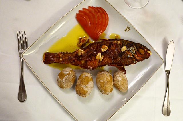 Parrot fish, Parador, El Hierro