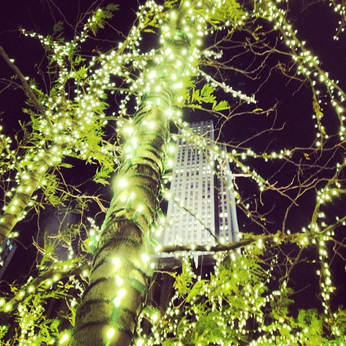 #grateful for twinkly lights | by MrsLimestone