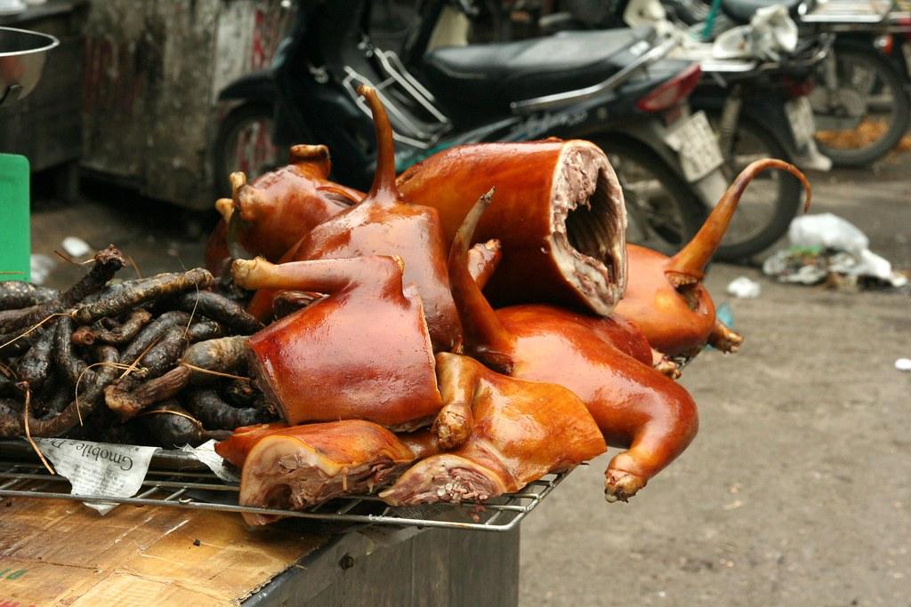 Vietnamese Food Dog