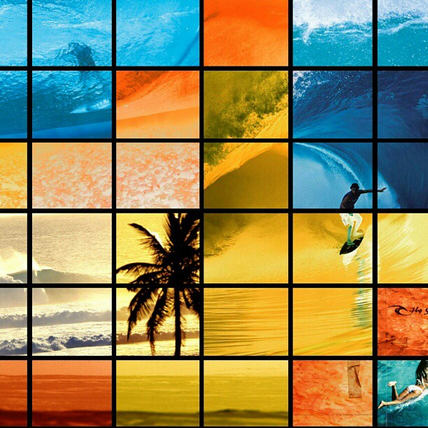 Girls Surfing Wallpaper: Wallpaper #surfer #surf #wave #ocean #palmtree #girl #biki