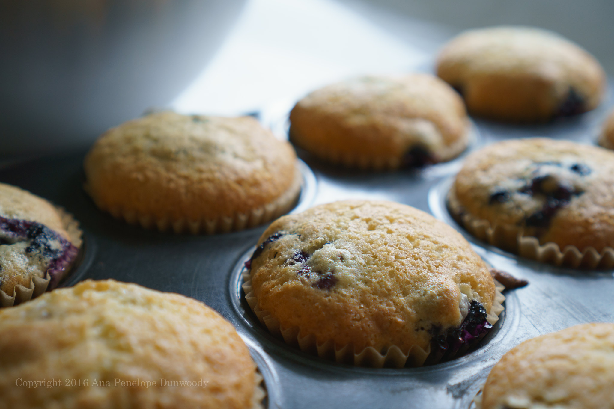 Baked Blueberry Muffins detail