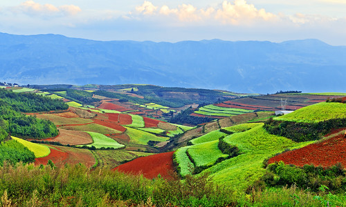 The Dongchuan Red Soil