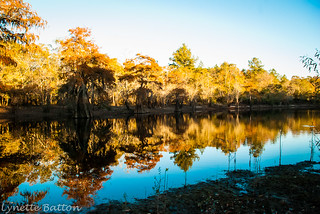 Satilla River Fishing November 2012 | by a Backwoods Photographer