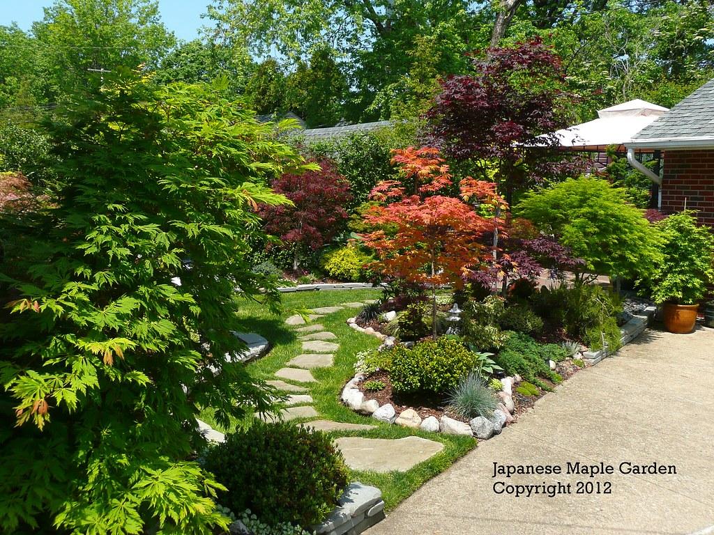 Spring Garden 2012 Flickr