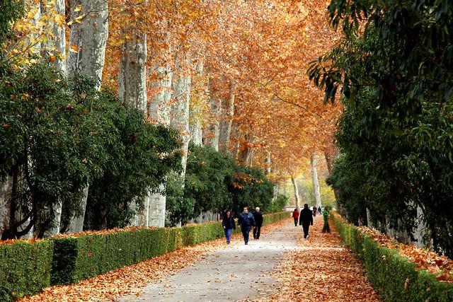jardines de aranjuez en oto o flickr photo sharing
