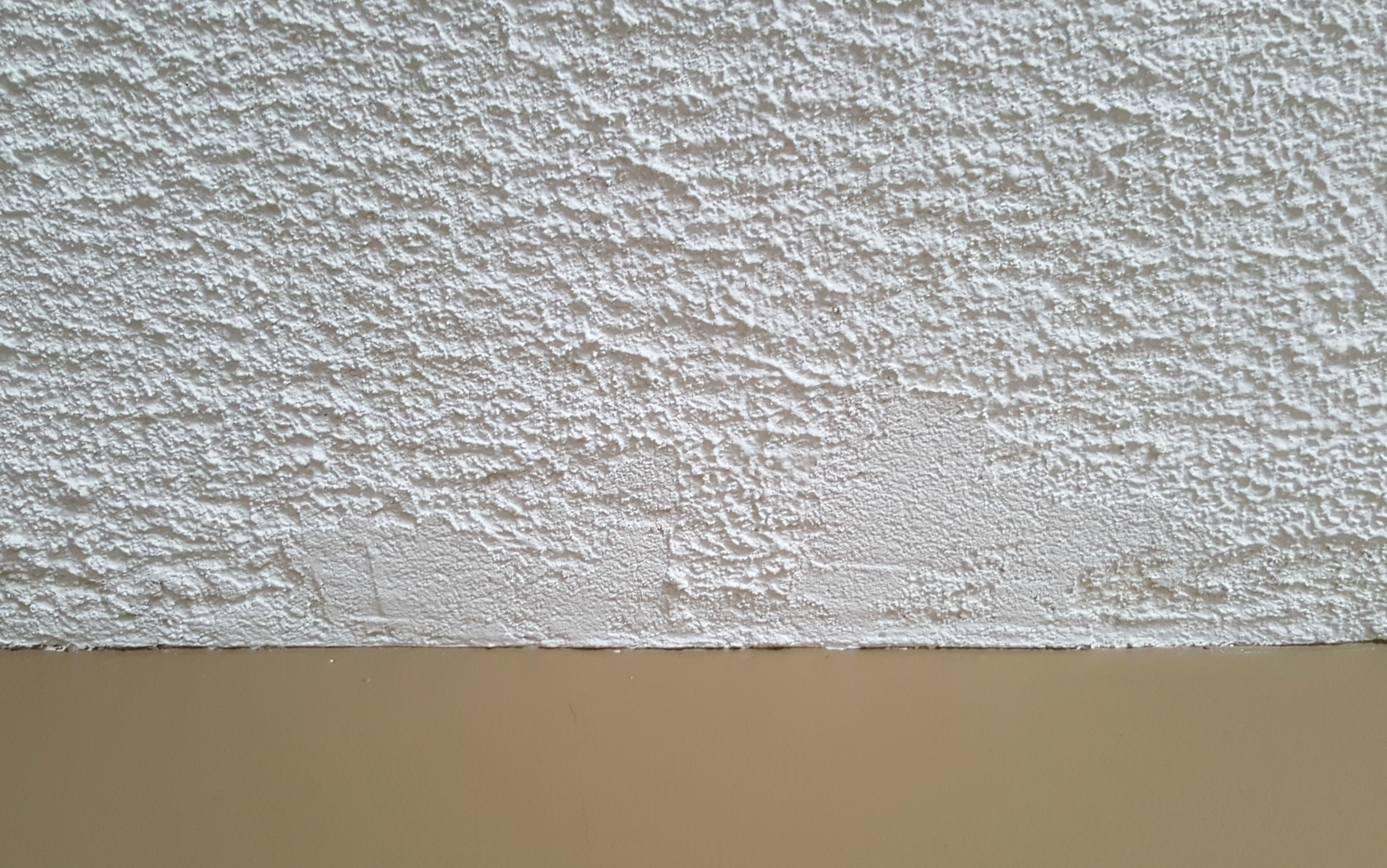Turtles and Tails: Removing a Popcorn Ceiling