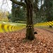 MFG Cross Woodlawn Park 12: Territory Marked
