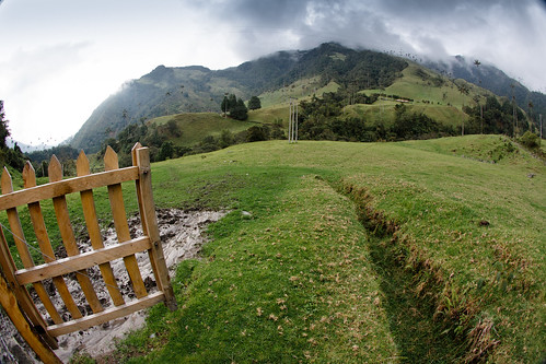 Valle del Cocora | by The Colombian Way