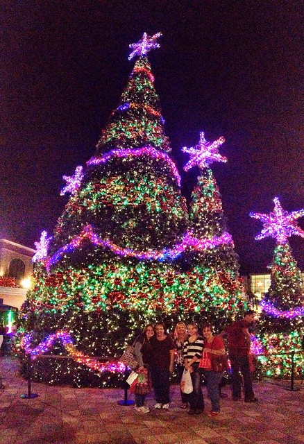 Wiregrass Mall Christmas Light Show