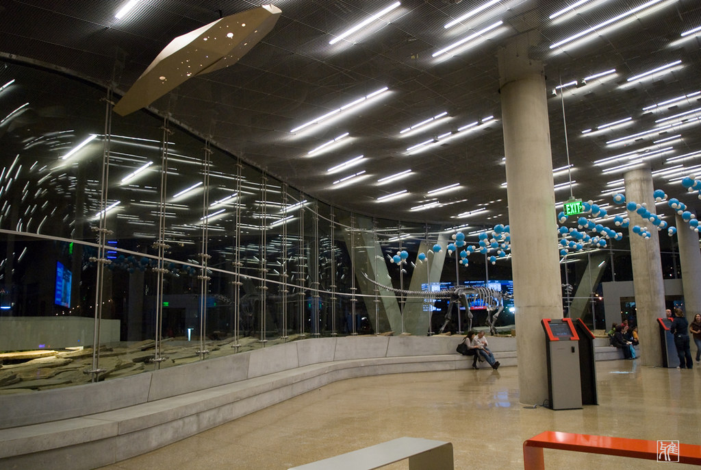 Perot Museum of Nature And Science Morphosis Perot Museum of Nature