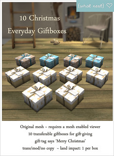 {what next} Christmas Everyday 10 Giftboxes Vendor | by WinterThorn