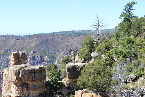 North Rim Grand Canyon T3I 090516 (75)