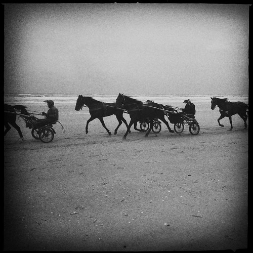 horse ride at the beach | by Ilona Hipstamatic
